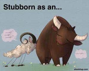 stubborn-as-an-ox